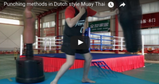 Dutch muay thai punching